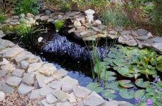 Стилистическое оформление пруда на приусадебном участке